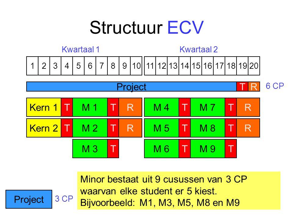 Structuur ECV 1324576891110121315141617191820 M 7T M 8 T M 9 TM 4T M 5 TM 6TKern 1 Kern 2 T T R R R R ProjectT R Kwartaal 1Kwartaal 2 6 CP 3 CP M 1T M 2 T M 3 T Minor bestaat uit 9 cusussen van 3 CP waarvan elke student er 5 kiest.