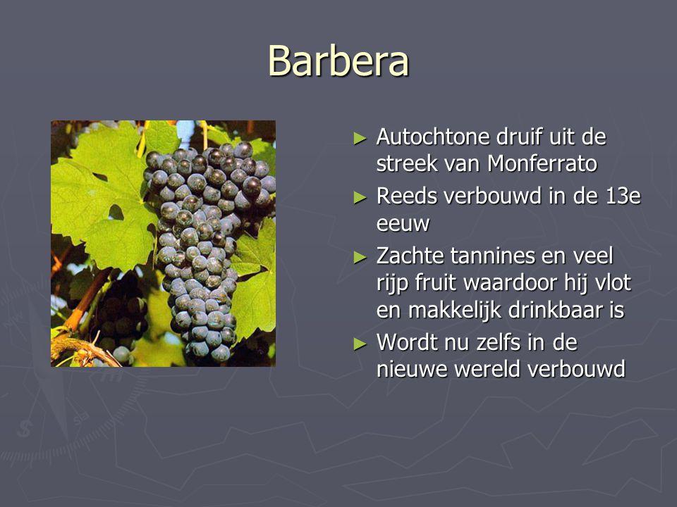 Barbera ► Autochtone druif uit de streek van Monferrato ► Reeds verbouwd in de 13e eeuw ► Zachte tannines en veel rijp fruit waardoor hij vlot en makk