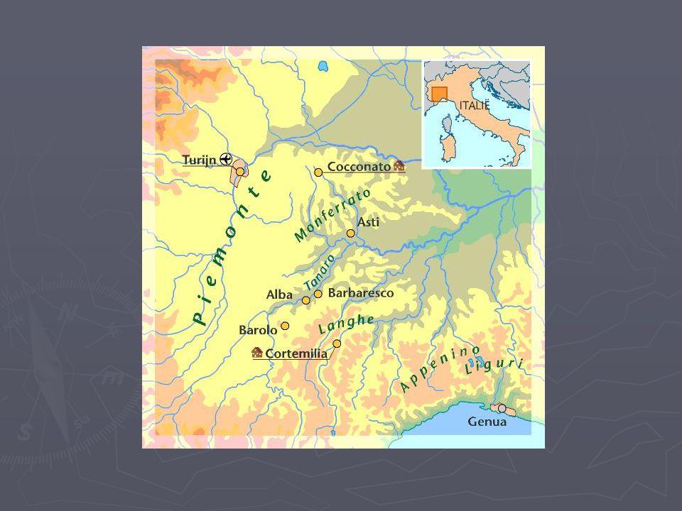 Langhe D.O.C.► Langhe is de streek rond het stadje Alba, gelegen tussen Barolo en Barbaresco.