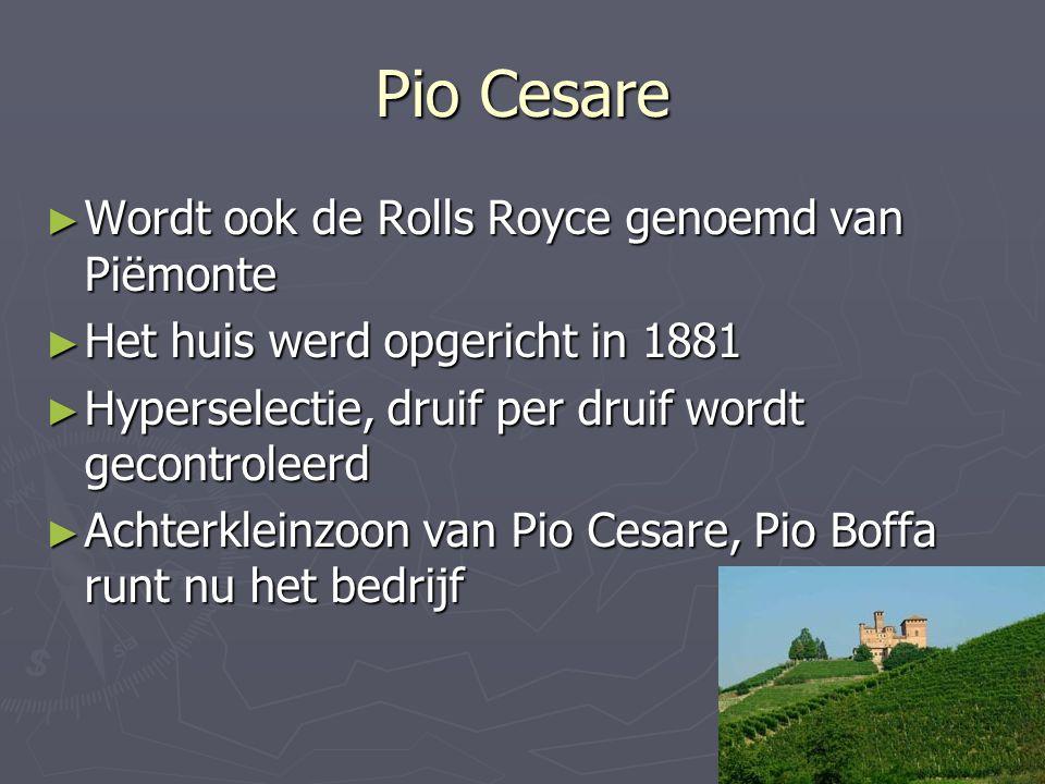 Pio Cesare ► Wordt ook de Rolls Royce genoemd van Piëmonte ► Het huis werd opgericht in 1881 ► Hyperselectie, druif per druif wordt gecontroleerd ► Ac