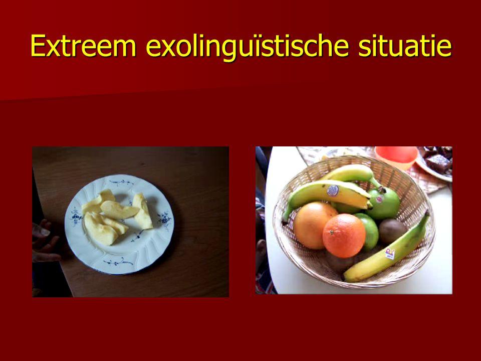 Extreem exolinguïstische situatie
