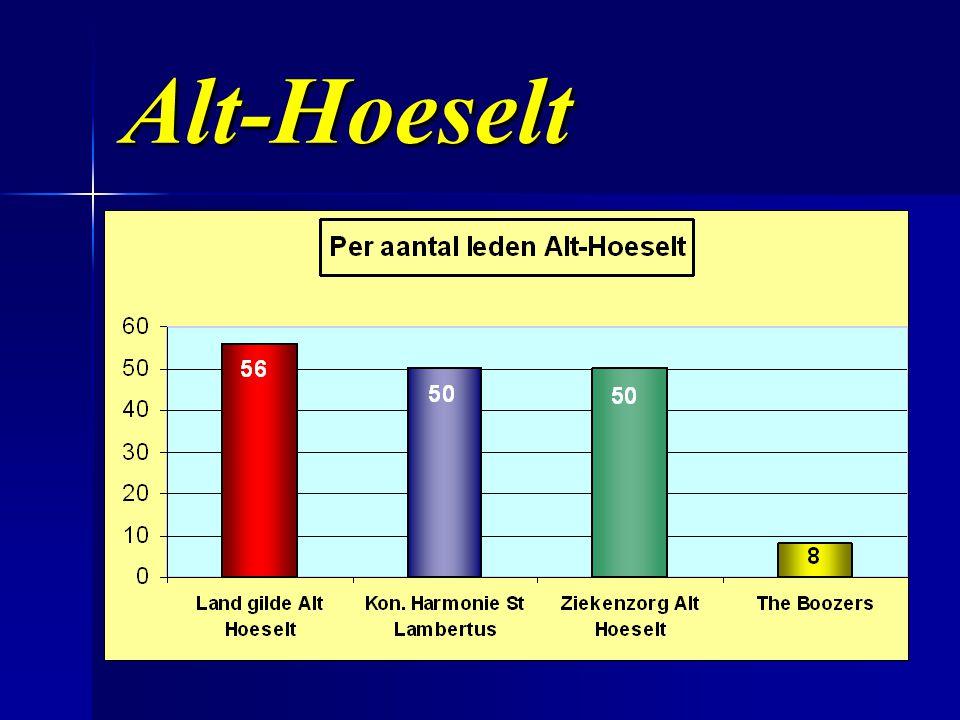 Alt-Hoeselt