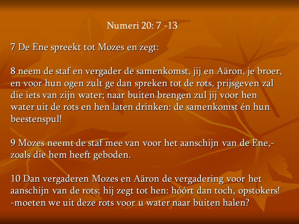 7 De Ene spreekt tot Mozes en zegt: 8 neem de staf en vergader de samenkomst, jij en Aäron, je broer, en voor hun ogen zult ge dan spreken tot de rots