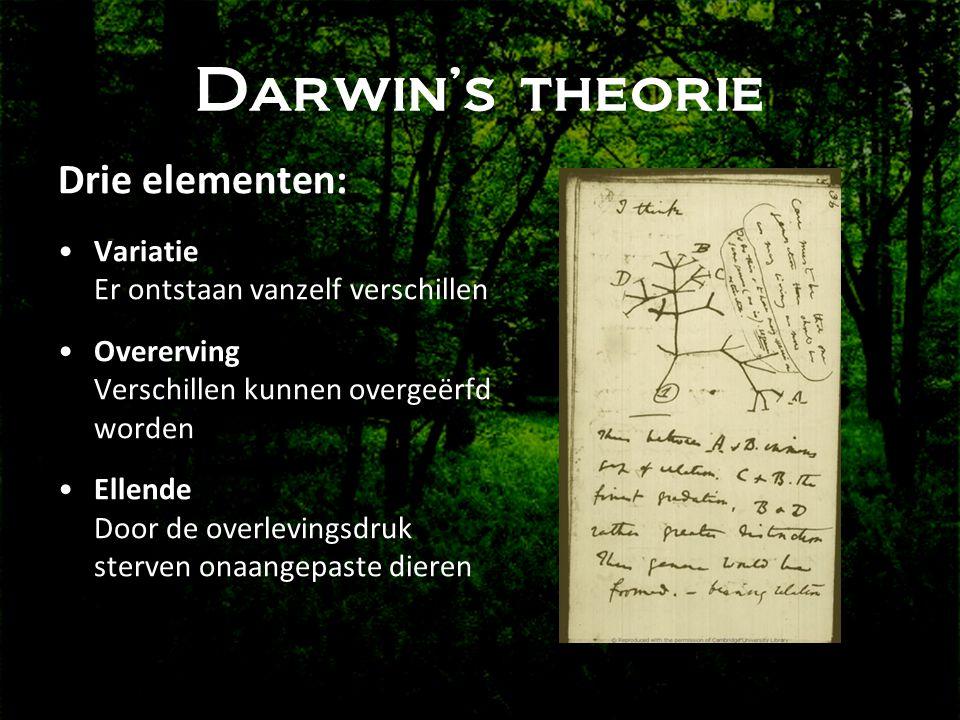 Darwin's theorie Drie elementen: •Variatie Er ontstaan vanzelf verschillen •Overerving Verschillen kunnen overgeërfd worden •Ellende Door de overlevingsdruk sterven onaangepaste dieren
