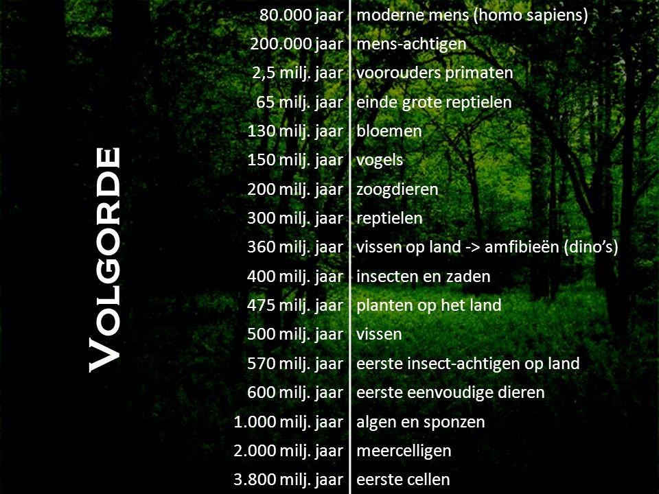 • Volgorde 80.000 jaarmoderne mens (homo sapiens) 200.000 jaarmens-achtigen 2,5 milj. jaarvoorouders primaten 65 milj. jaareinde grote reptielen 130 m