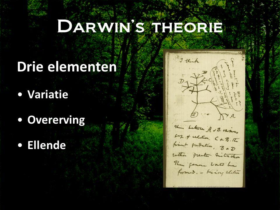 Darwin's theorie Drie elementen •Variatie •Overerving •Ellende