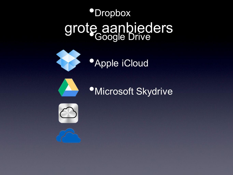 grote aanbieders • Dropbox • Google Drive • Apple iCloud • Microsoft Skydrive