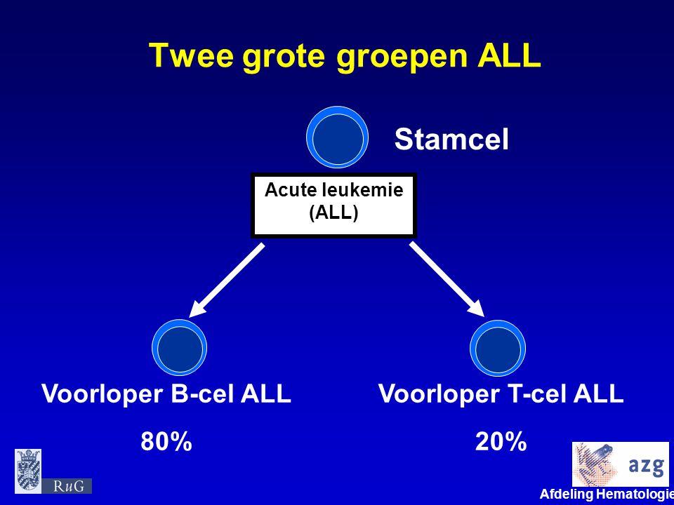 Afdeling Hematologie umcg Twee grote groepen ALL Stamcel Voorloper B-cel ALL 80% Acute leukemie (ALL) Voorloper T-cel ALL 20%