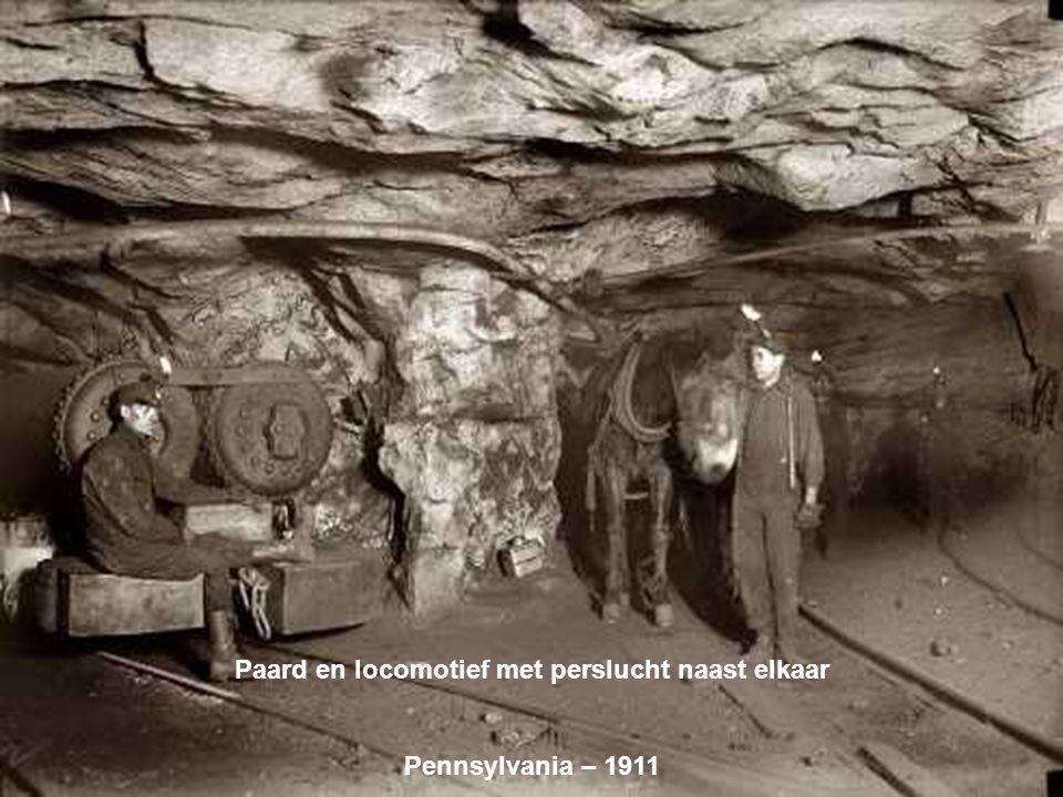 Groep jonge mijnwerkers Pennsylvania – 1911 Groep jonge mijnwerkers Pennsylvania – 1911
