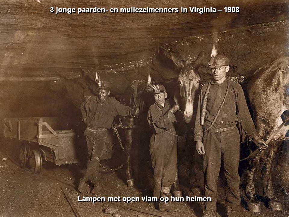 Mijnwerker Kentuky – oktober 1935 Mijnwerker Kentuky – oktober 1935