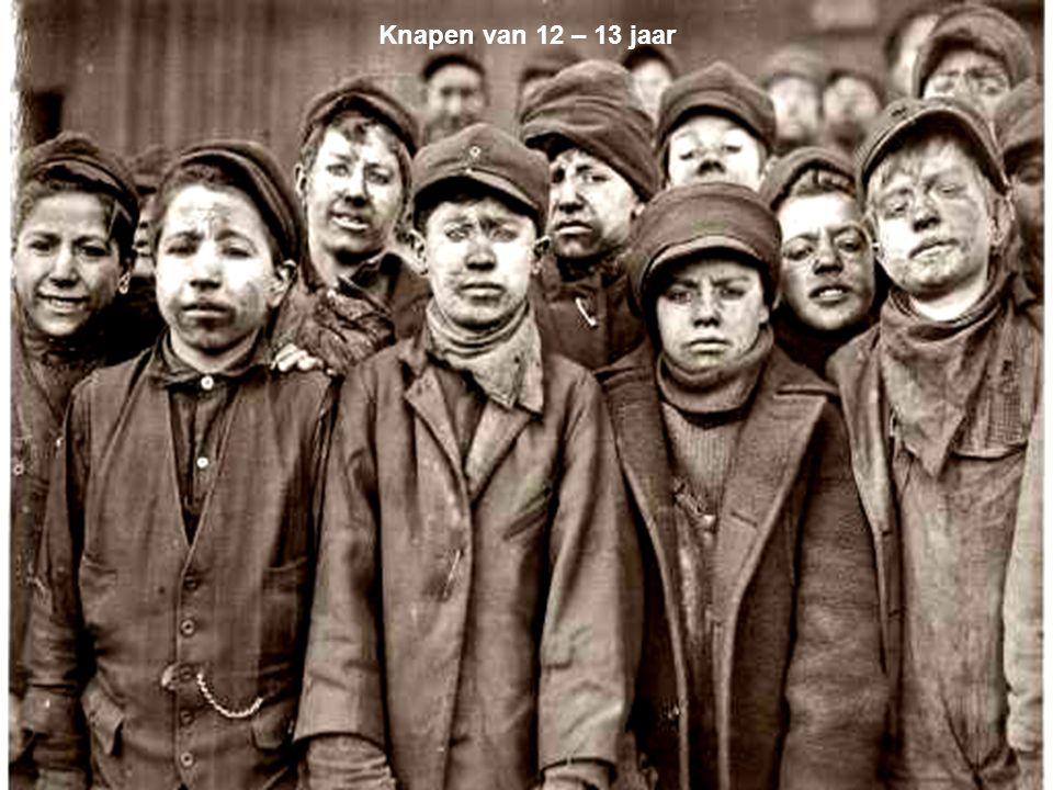 Knapen van 12 – 13 jaar