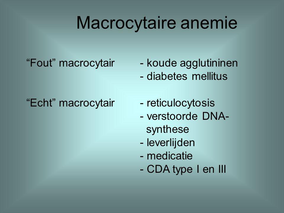"Macrocytaire anemie ""Fout"" macrocytair- koude agglutininen - diabetes mellitus ""Echt"" macrocytair- reticulocytosis - verstoorde DNA- synthese - leverl"