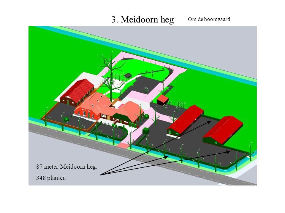3. Meidoorn heg 87 meter Meidoorn heg. 348 planten Om de boomgaard