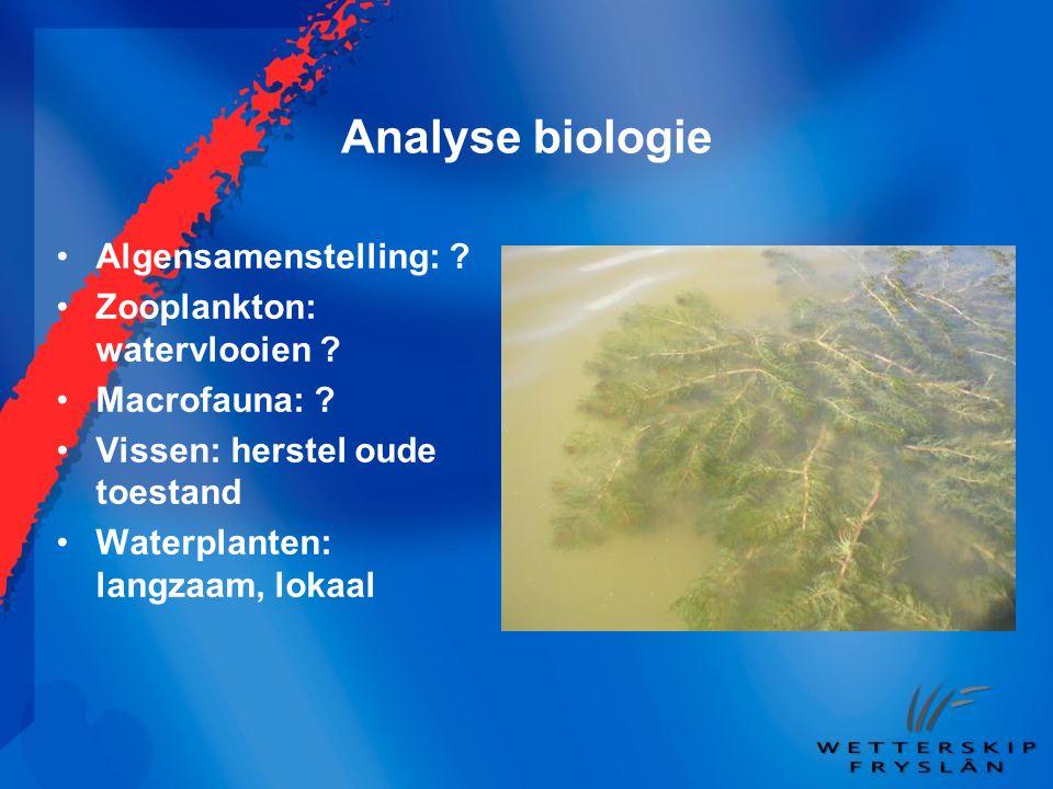 Analyse biologie •Algensamenstelling: ? •Zooplankton: watervlooien ? •Macrofauna: ? •Vissen: herstel oude toestand •Waterplanten: langzaam, lokaal