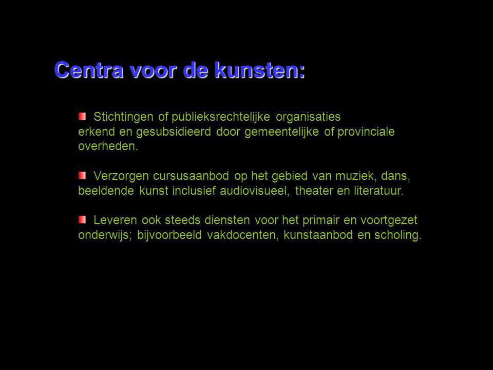 Centra voor de kunsten: Stichtingen of publieksrechtelijke organisaties erkend en gesubsidieerd door gemeentelijke of provinciale overheden. Verzorgen