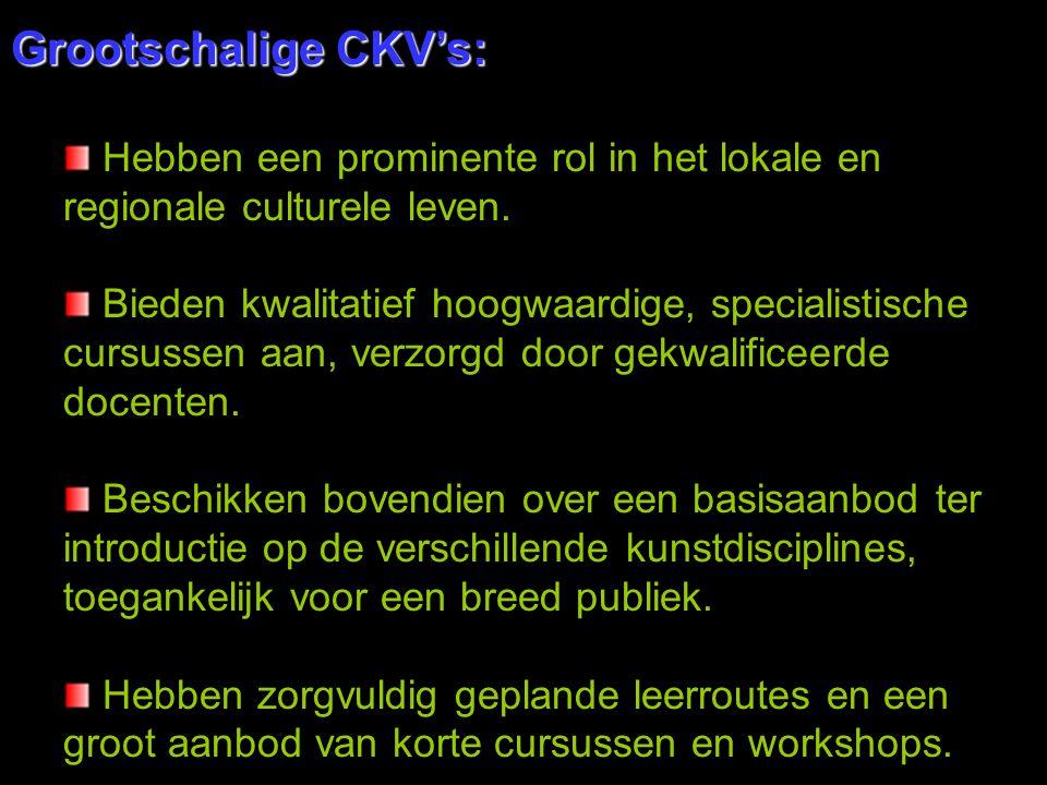 Grootschalige CKV's: Hebben een prominente rol in het lokale en regionale culturele leven. Bieden kwalitatief hoogwaardige, specialistische cursussen