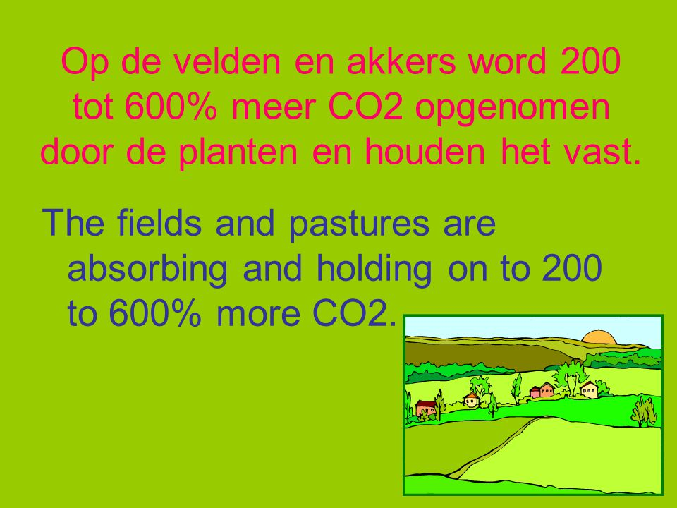 Deze natuur neemt een beetje CO2 op. This nature takes a little CO2.