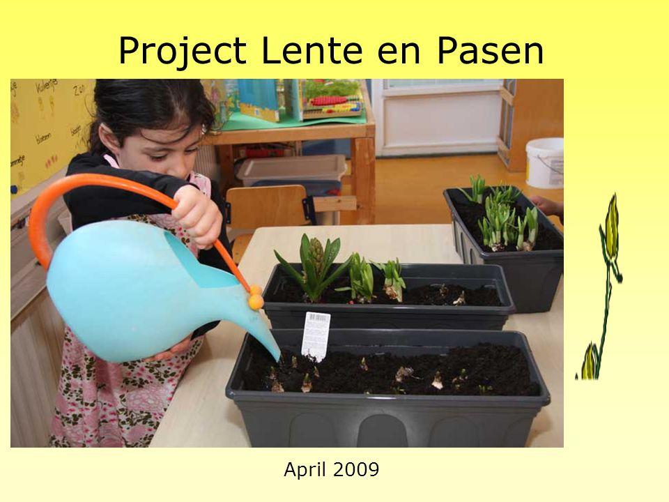 """Project """"Kikker"""" We maken een film Maart 2008"""