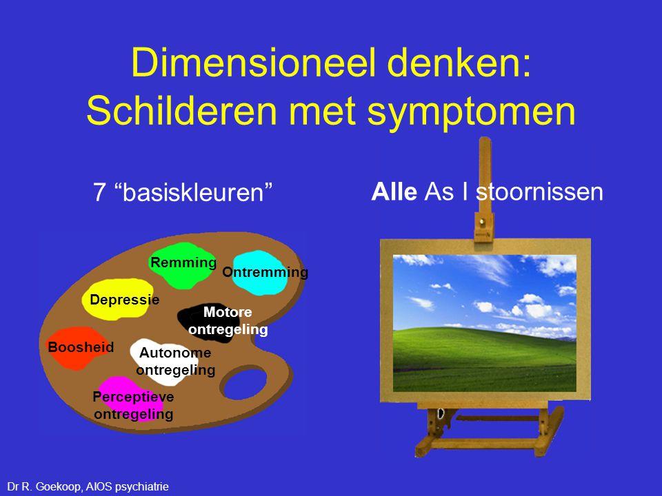 Dimensioneel denken: Schilderen met symptomen Perceptieve ontregeling Depressie Remming Ontremming Boosheid Autonome ontregeling Motore ontregeling Al