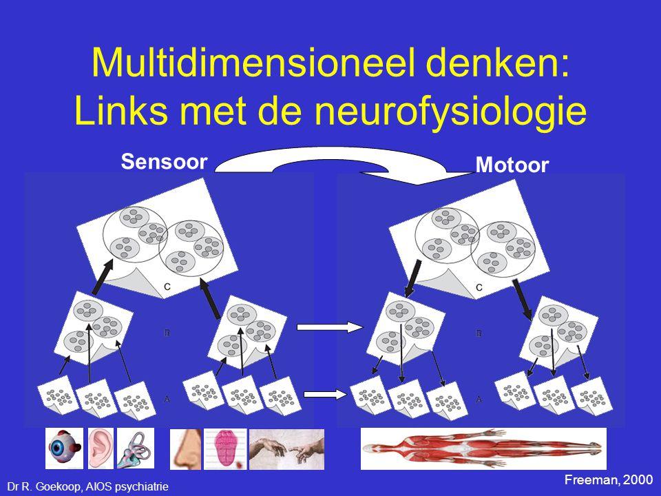 Sensoor Motoor Freeman, 2000 Multidimensioneel denken: Links met de neurofysiologie Dr R. Goekoop, AIOS psychiatrie