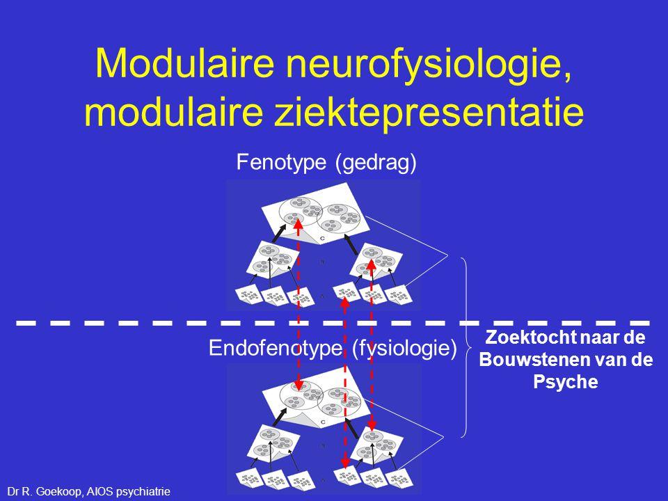 Endofenotype (fysiologie) Fenotype (gedrag) Zoektocht naar de Bouwstenen van de Psyche Modulaire neurofysiologie, modulaire ziektepresentatie Dr R. Go