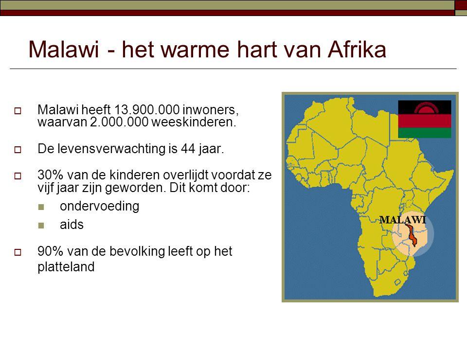  Malawi heeft 13.900.000 inwoners, waarvan 2.000.000 weeskinderen.  De levensverwachting is 44 jaar.  30% van de kinderen overlijdt voordat ze vijf