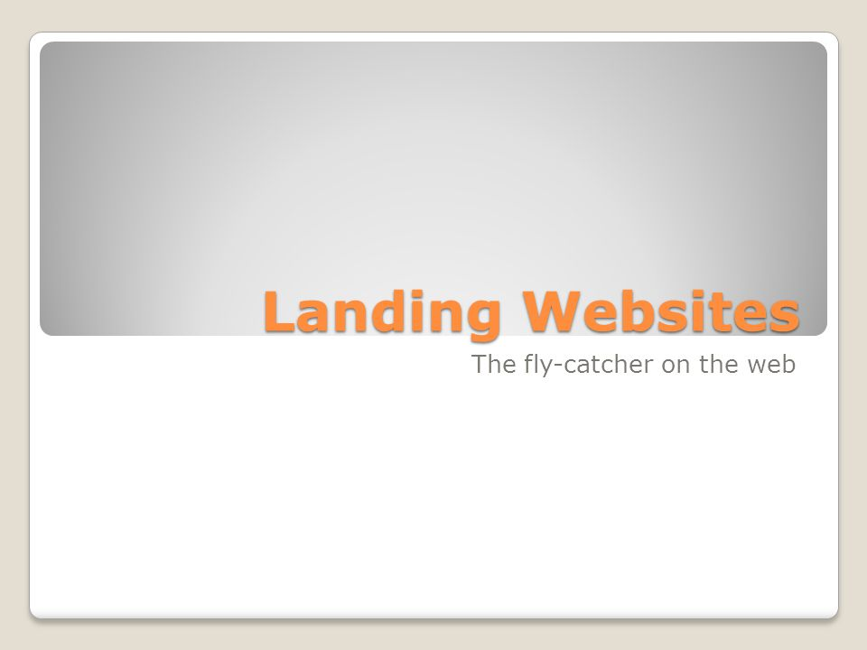 Landing Websites The fly-catcher on the web
