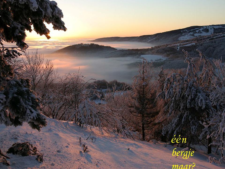 Ik wens je een goed En gezond nieuwjaar