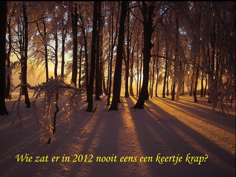 gelukkig 2013