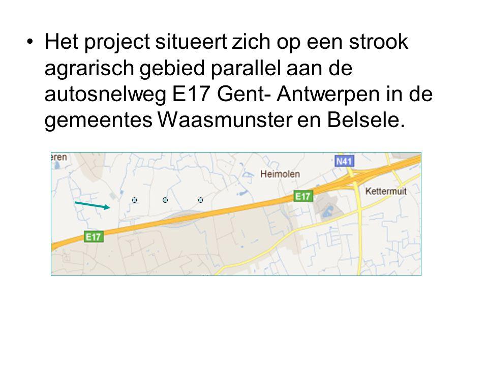 •Het project situeert zich op een strook agrarisch gebied parallel aan de autosnelweg E17 Gent- Antwerpen in de gemeentes Waasmunster en Belsele.