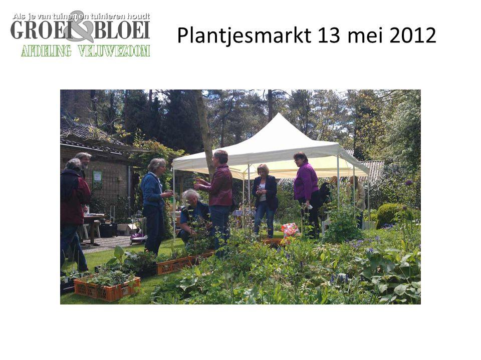Plantjesmarkt 13 mei 2012