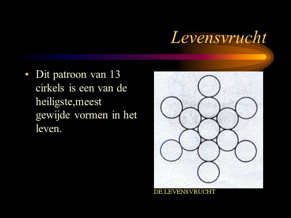 Levensvrucht •Dit patroon van 13 cirkels is een van de heiligste,meest gewijde vormen in het leven.