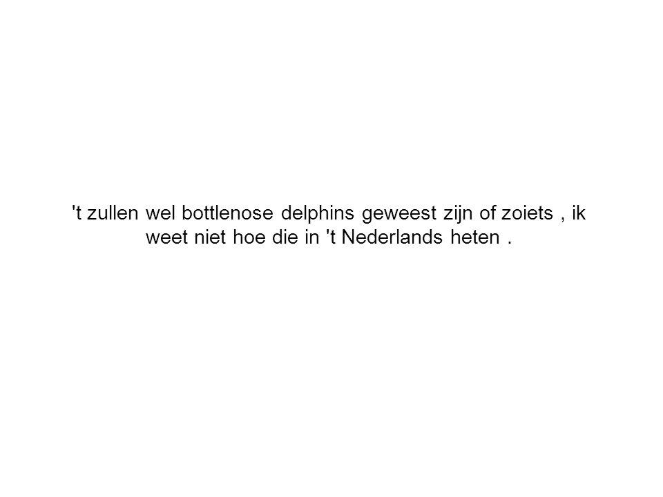t zullen wel bottlenose delphins geweest zijn of zoiets, ik weet niet hoe die in t Nederlands heten.