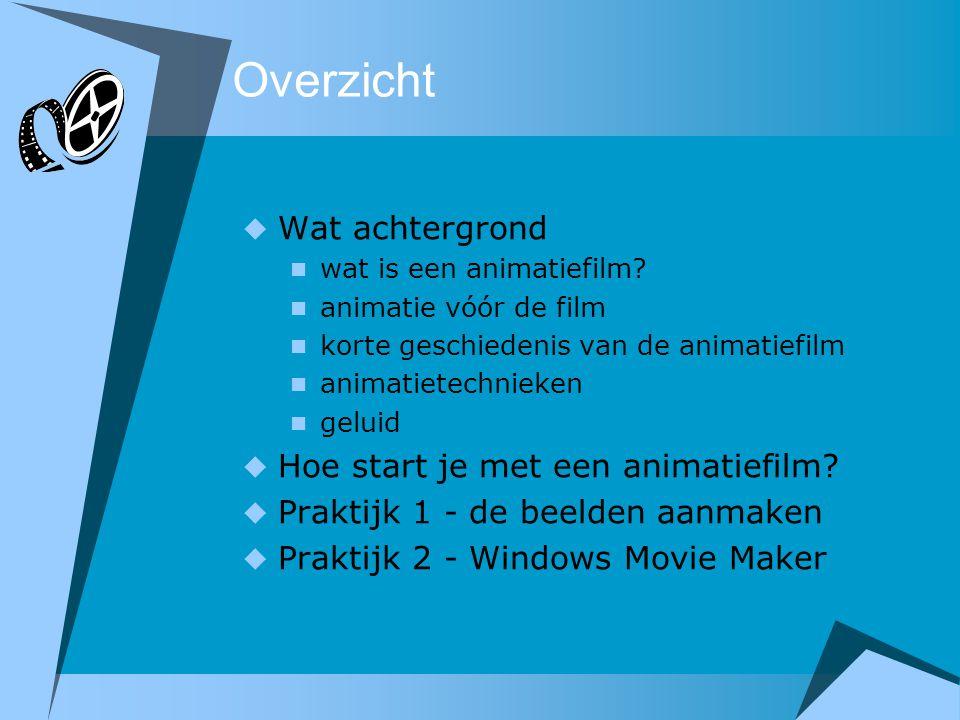 Overzicht  Wat achtergrond  wat is een animatiefilm?  animatie vóór de film  korte geschiedenis van de animatiefilm  animatietechnieken  geluid