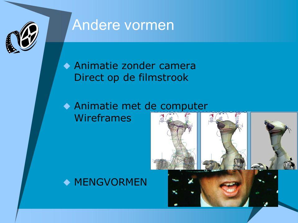 Andere vormen  Animatie zonder camera Direct op de filmstrook  Animatie met de computer Wireframes  MENGVORMEN