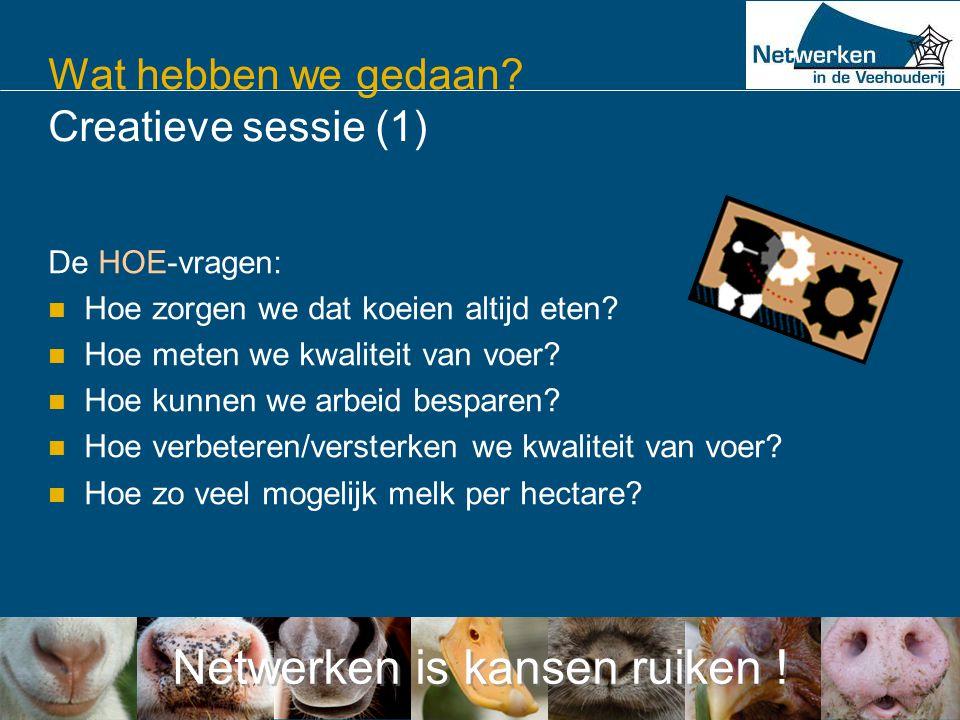 Netwerken is kansen ruiken ! Wat hebben we gedaan? Creatieve sessie (1) De HOE-vragen:  Hoe zorgen we dat koeien altijd eten?  Hoe meten we kwalitei