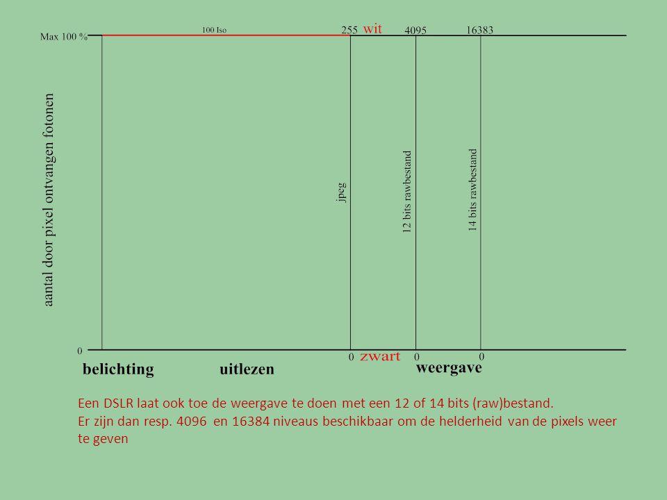 Een DSLR laat ook toe de weergave te doen met een 12 of 14 bits (raw)bestand. Er zijn dan resp. 4096 en 16384 niveaus beschikbaar om de helderheid van