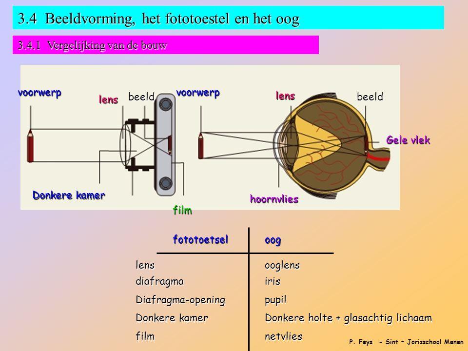 P. Feys - Sint – Jorisschool Menen 3.4 Beeldvorming, het fototoestel en het oog 3.4.1 Vergelijking van de bouw voorwerpvoorwerp Donkere kamer lens len