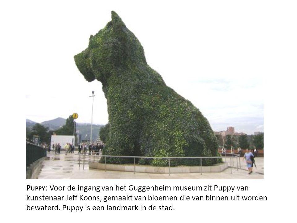 P UPPY : Voor de ingang van het Guggenheim museum zit Puppy van kunstenaar Jeff Koons, gemaakt van bloemen die van binnen uit worden bewaterd. Puppy i