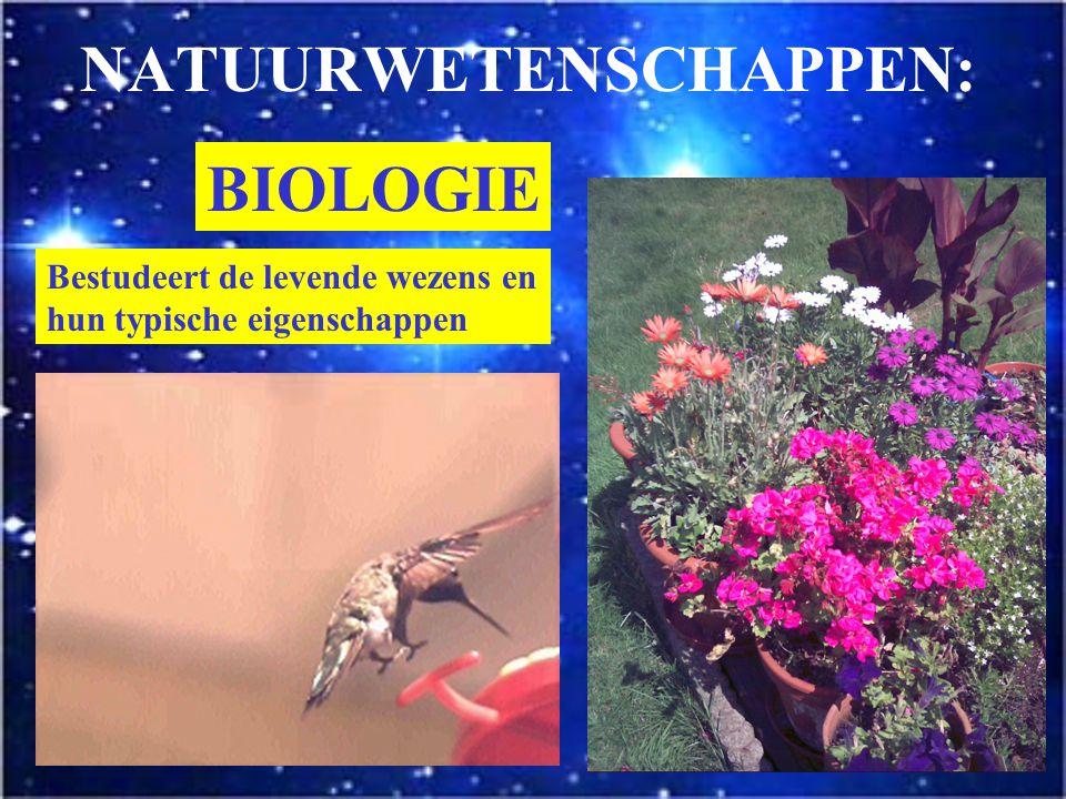 NATUURWETENSCHAPPEN Bestuderen natuurverschijnselen Vertrekken van de waarneming Gebruiken de Natuurwetenschappelijke methode