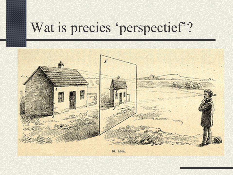 Wat is precies 'perspectief'?
