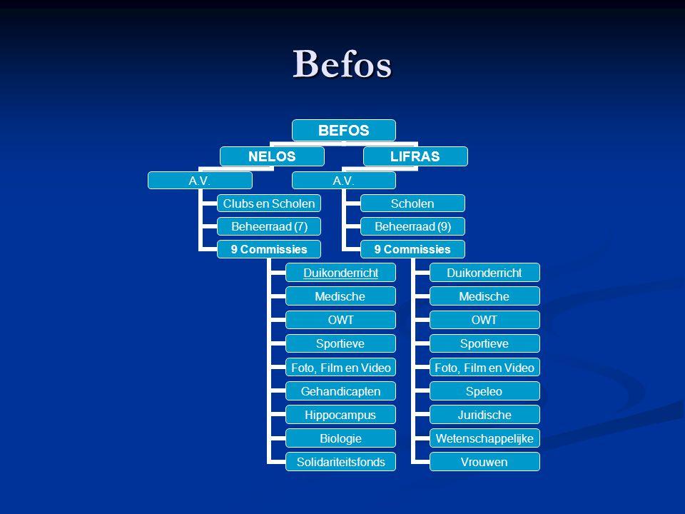 Befos BEFOS NELOS A.V. Clubs en Scholen Beheerraad (7) 9 Commissies Duikonderricht Medische OWT Sportieve Foto, Film en Video Gehandicapten Hippocampu