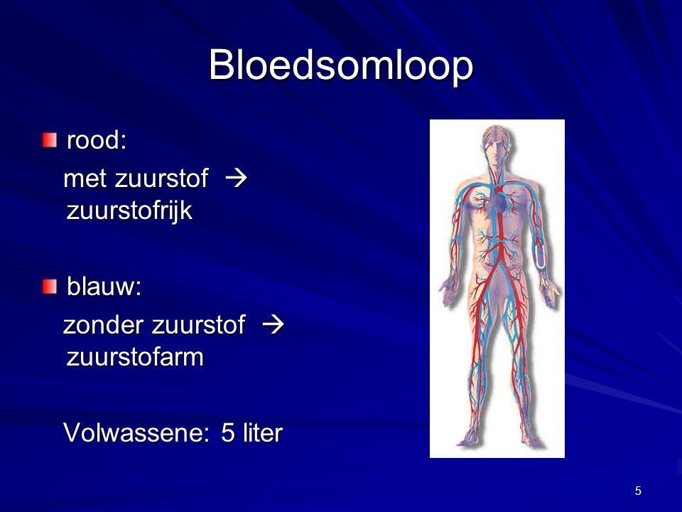 5 Bloedsomloop rood: met zuurstof  zuurstofrijk met zuurstof  zuurstofrijkblauw: zonder zuurstof  zuurstofarm zonder zuurstof  zuurstofarm Volwass