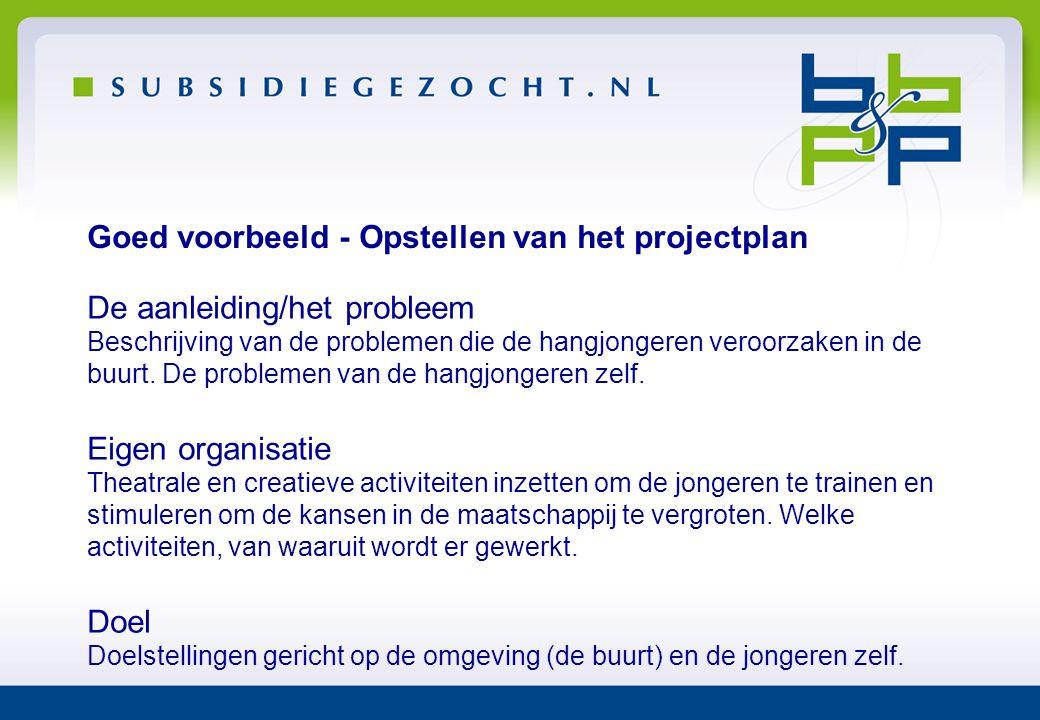 Goed voorbeeld - Opstellen van het projectplan De aanleiding/het probleem Beschrijving van de problemen die de hangjongeren veroorzaken in de buurt. D