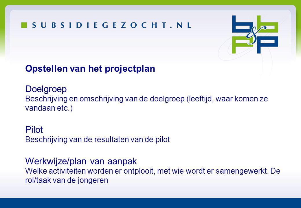 Opstellen van het projectplan Doelgroep Beschrijving en omschrijving van de doelgroep (leeftijd, waar komen ze vandaan etc.) Pilot Beschrijving van de