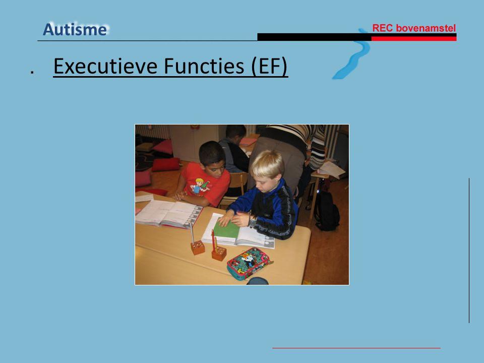 Autisme. Executieve Functies (EF)