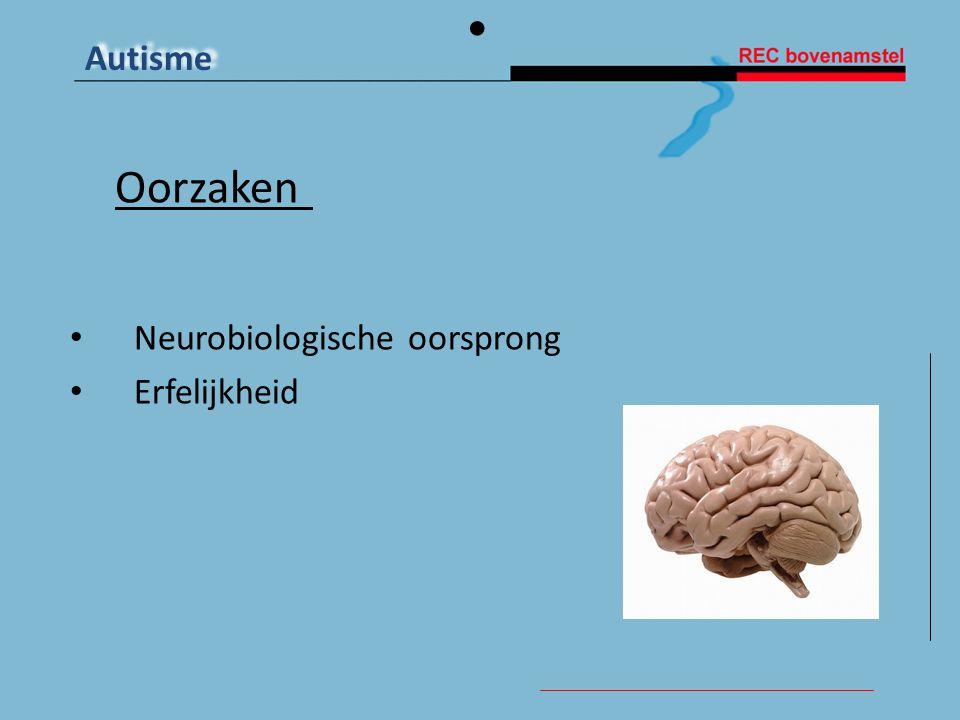 Autisme Oorzaken • Neurobiologische oorsprong • Erfelijkheid
