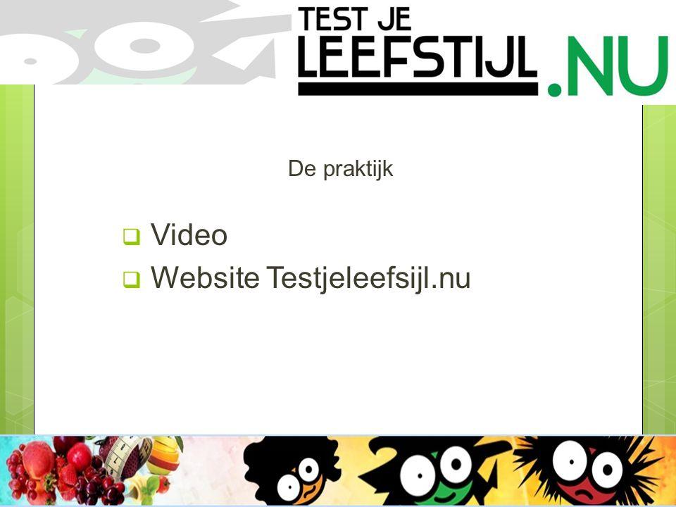 De praktijk  Video  Website Testjeleefsijl.nu