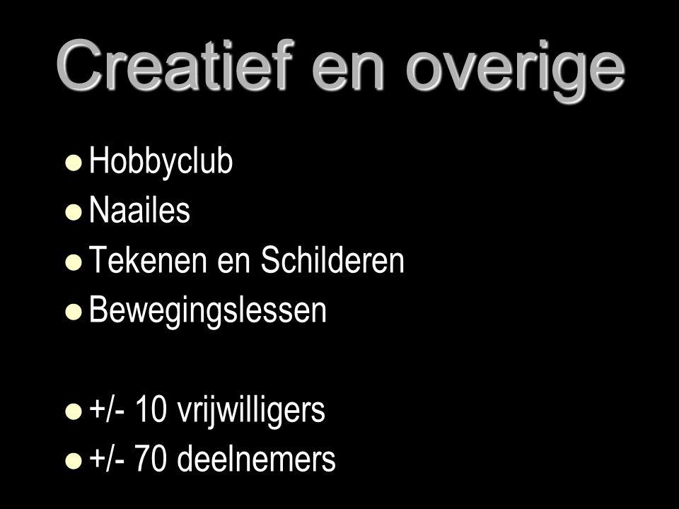 Creatief en overige   Hobbyclub   Naailes   Tekenen en Schilderen   Bewegingslessen   +/- 10 vrijwilligers   +/- 70 deelnemers