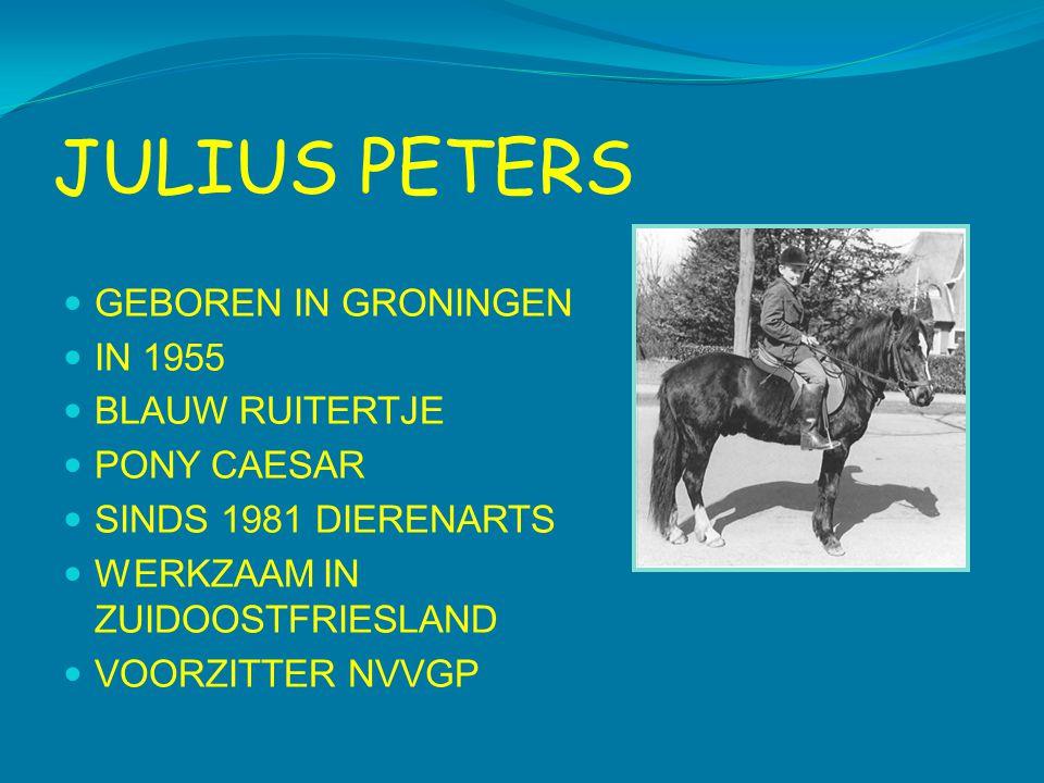JULIUS PETERS  GEBOREN IN GRONINGEN  IN 1955  BLAUW RUITERTJE  PONY CAESAR  SINDS 1981 DIERENARTS  WERKZAAM IN ZUIDOOSTFRIESLAND  VOORZITTER NVVGP